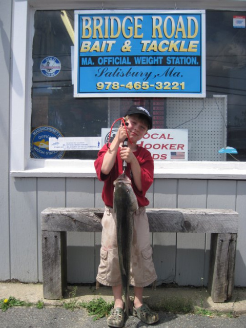 Briidge Road Bait and Tackle